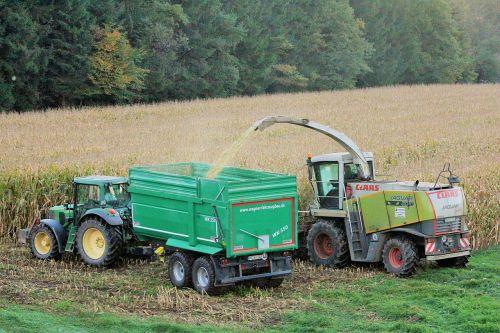 derlius,kukurūzai,ruduo,kukurūzų burbuolės,laukas,Žemdirbystė,daržovės,kukurūzų derlius,kukurūzų grūdai,kukurūzų laukas,gamta,bio,ariamasis,pasėliai,maistas,padėka,vasara,lauko darbas,traktoriai,derliaus metas,kukurūzų augalas,traktorius,buldogas,kombainas