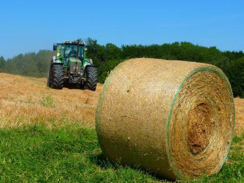 derlius,derlius,laukas,šiaudai,rutuliai,traktorius,vasara