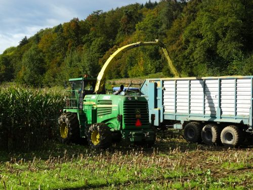 derliaus metas,kukurūzų derlius,derlius,traktorius,ruduo,priekabos,mesti