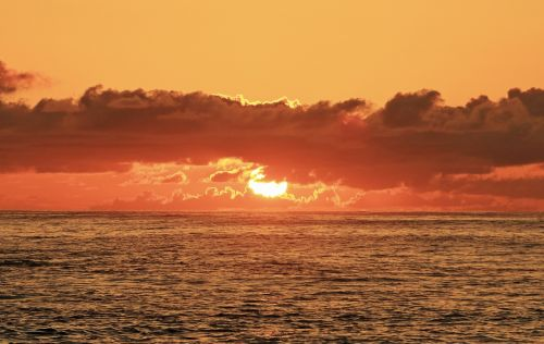 Hawaii,saulėtekis,papludimys,vandenynas,Hawaii beach,jūra,oahu