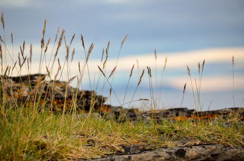 šienas,dangus,kraštovaizdis,Rokas,ant krašto,vasara,finnmark,Šiaurės Norvegija,Norvegija