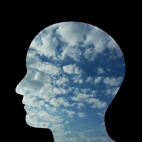 galva,vyras,asmuo,žmonės,veidas,profilis,vienatvė,laimė,mintis,dangus,debesys,nerimas,painiavos,psichinė sumišimas,psichologija,galvoti,emocija,mintis,protas