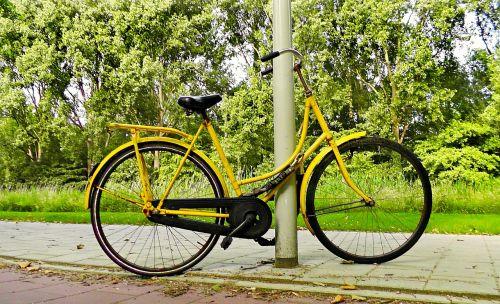 dviratis,dviratis,vintage,geltonas dviratis,pastatytas dviratis,miesto,gatvė