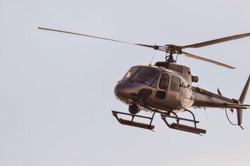 sraigtasparnis,skrydis,skristi,orlaivis,kelionė,antena,aviacija,purentuvas,rotorius,gabenimas
