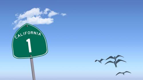 greitkelis 1,Kalifornija 1,greitkelis,Ramiojo vandenyno regionas,kranto,kelionė,vaizdingas,1,pakrantė,vienas,maršrutas,greitkelis 1 skydas,maršruto 1 skydas,Kalifornijos greitkelių skydas,Kalifornijos greitkelis 1 skydas,Hwy 1,hwy 1 skydas,kalifornija hwy 1,kalifornija 1 skydas,mėlynas dangus,laisvė,žuvėdros,paukščiai,skrydis