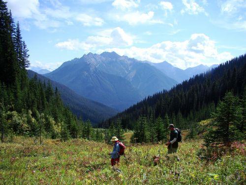 žygiai,kraštovaizdis,kalnai,vaizdingas,pieva,keliautojas,nuotykis,asmuo,gamta,gamtos kraštovaizdis,žmonės,Sportas,lauke,backpacker,kalnų peizažas,laisvė,grazus krastovaizdis,peizažai,gražus,žygių takas,takas,įkvepiantis kraštovaizdis,dangus,vasara,nuotykių keliones,kootenay,Nacionalinis parkas