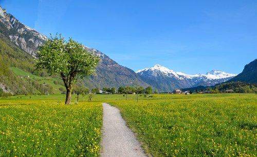 žygiai, Alpine, kraštovaizdis, Šveicarija, Turizmas, Glarus, kalnai, toli, medis, pavasaris, dangus, masyvas, žalias, pobūdį, šventės, atostogos