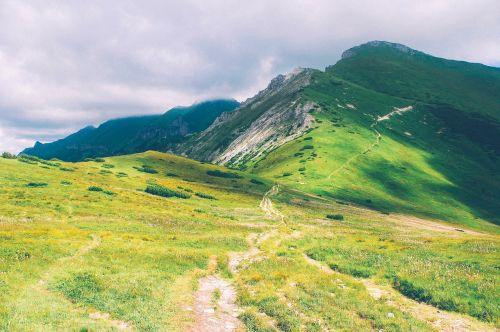 žygių takas,pėsčiųjų takas,takas,kelias,kelias,gamta,kalnai,žygiai,kalvos,žalias,žolė