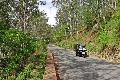 kalvos kelias,auto rickshaw,Nandi kalvos,miškas,Deccan plato,Karnataka,Indija