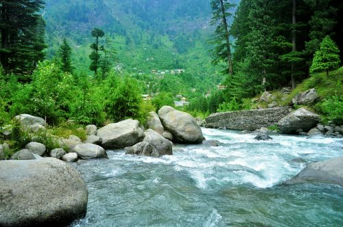srautas, upė, upelis, himalajiečių, gamta, vanduo, miškas, akmenys, kraštovaizdis, Himalajų upelis 9