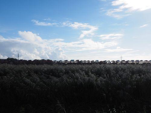 hindenburg damm,automobilinis traukinys,traukinys,sylt,Sylter automobilinis traukinys,traukinys,tranzitas,autotransportas,Šiaurės jūros sala