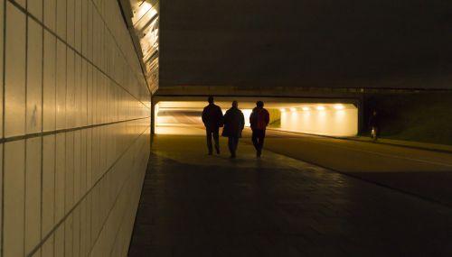 namuose,Draugystė,draugai,žmonės,vaikščioti,naktis