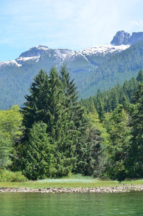 homfray kanalas,Britų Kolumbija,Toba,griuvimo garsas,Kanada,miškas,vanduo,vandenynas,ežeras,kalnas,kalnai,vaizdingas,gamta