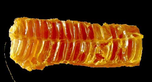 medus,sauskelnės,maistas,bitės