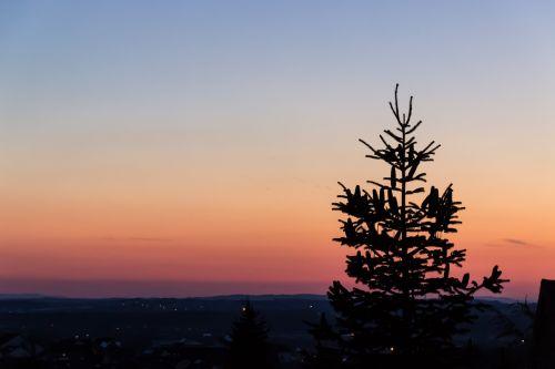 horizontas,vakaras,twilight,nuotaika,vakarinis dangus,raudona,saulės šviesa,medis,dusk,saulėlydis,dramatiškas dangus,dangus,fonas,tapetai