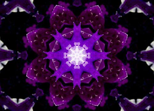 violetinė, lapai, modelis, dizainas, kartojasi, sūkurys, ratas, apskritas, horizontalus, horizontalios abstrakčios violetinės spalvos
