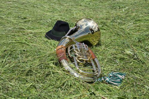 ragas,tuba,muzika,pūstuvai,blizgesys,šviesti,orkestras,instrumentas,kostiumas,dūdų orkestras,vario instrumentas,smūgis,veidrodis,muzikinis instrumentas,garsas,regioninis,gamta,Žemdirbystė,pieva,laukai,žolė,kraštovaizdis,pranešta,idilija