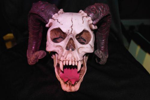 raguotas kaukolas,monstras,kaukolė,velnias,velnias,siaubas,Halloween,demonas,ragas,baisu,baugus,raguotas,pragaras,satanas,galva,skeletas,ragai,kaulas,nelaimingas,imp