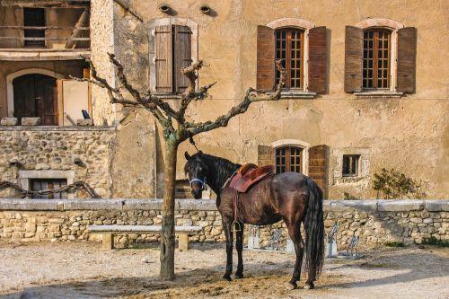 arklys,padengtas,prijungtas,ruda,Provence