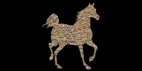arklys, gyvūnas, Vintage arklys, mažas poli, važiuoti, jojimo arkliu, jojikas, Colt, kumelaitę, Mare, mulas, eržilas, Pony, kumeliukas, Mustang, 3d arklys, poli, trikampio forma, 3d formos, arklys akcijų, arklys Wiki, arklys vaizdas, arklys vaizdas, arklys iliustracija, arklys vektorius, arklys PNG, arklys logotipas, arklių grafika, arklys dizainas, arklys marškinėlius, arklys dovana, fonas tekstūros, fonas abstraktus, background vaizdai, pixabay, fono modelis, žemos poli, trikampis, fonas, Anotacija, dizainas, tekstūros, pristatymas, brošiūra, taškų, Laisvalaikis Kamienas nuotraukos, Nemokama iliustracijos