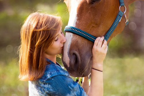 arklys, žmogus, mergina, Draugystė, Fuchs