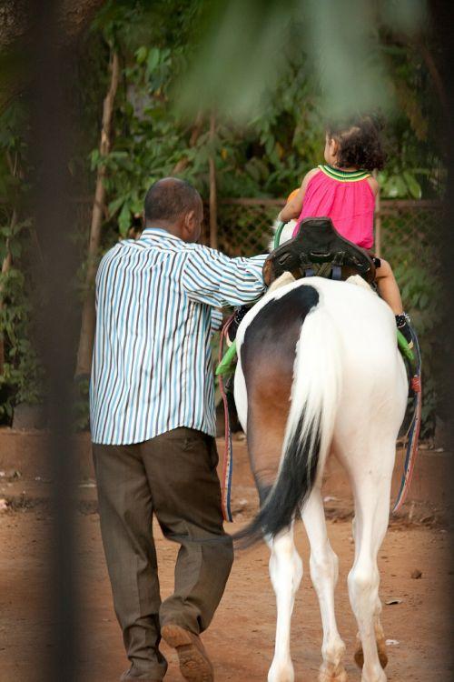arklys,vaikas,Jodinėjimas,jodinėjimas,mergaitė,Jodinėjimas arkliu,arkliai