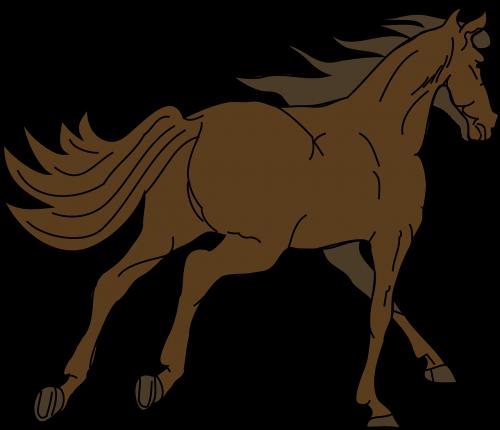 arklys,gyvūnas,eržilas,melding,Mare,važiuoti,šokti,rait,paleisti,kirvis,uodega,Žiurkė