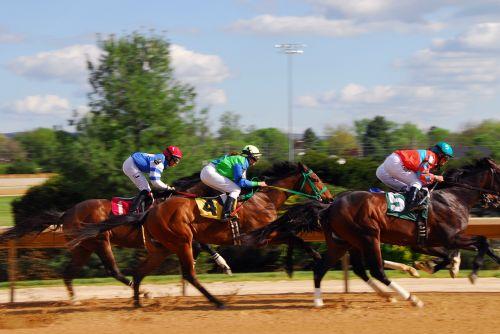 žirgų lenktynės,lenktynės,lenktynių žirgais,galia,greitis,jodinėjimas,lenktynės,Mustangas,stiprus,greitai