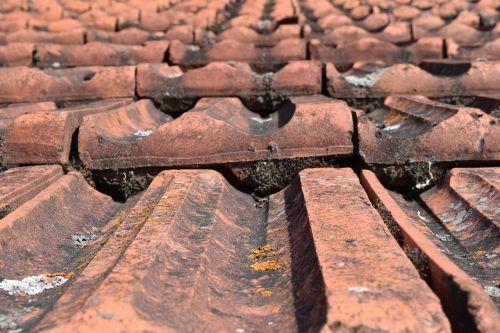 namo stogas,ištemptas,plytelės,stogas,plyta,stogas,Uždaryti,fonas,senas,raudona