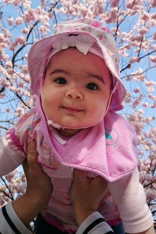 žmogus,Asmeninis,kūdikis,kūdikis,vaikai,mažas vaikas,mergaitė,sėkmė,laimingas,meilė,portretas,mutterglück,tėvo laimė,tėvelių laimė,5 mėnesiai,minkštumas,malonė,veidas,akys,vyšnių žiedas,vyšnia