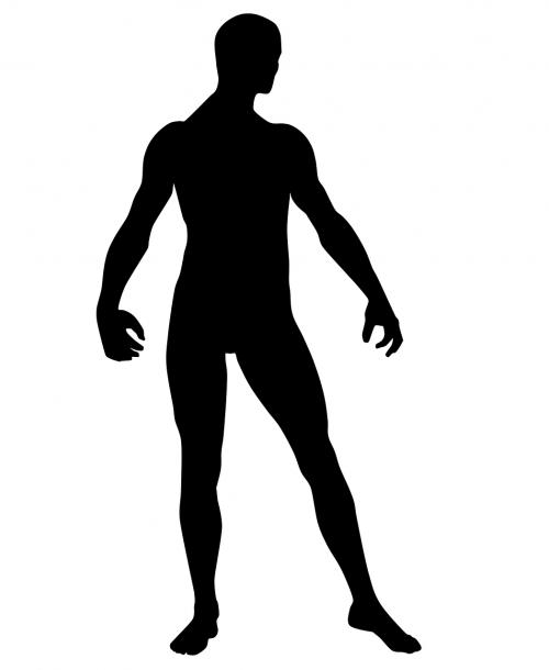 Žmogaus kūnas,siluetas,kūnas,vyras