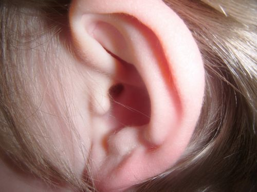 ausis, ausys, žmogus, vaikas, plaukai, galva, anatomija, žmogaus ausis