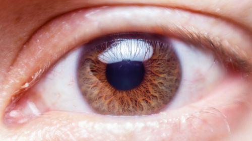 žmogaus akis, iris, makro, vaizdas, ragenos, ruda, viešasis & nbsp, domenas, tapetai, fonas, uždaryti & nbsp, regėjimas, regėjimas, atrodo, anatomija, optinis, spalvinga, optinis, žiūri, blakstienos, akies vokas, žvilgsnis, matyti, matyti, žmogaus akis uždaryti