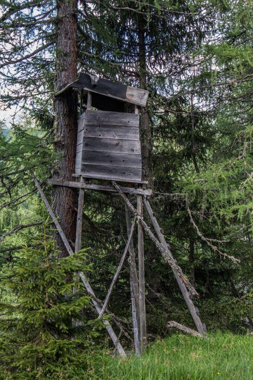 medžiotojas, medžiotojas buvo, miškas, mediena, malonumas, medžioklė, medžiotojo vieta, ešeriai, miškai, medžiai, gamta, kraštovaizdis, terasa, medžioklės sėdynė, miško kraštas