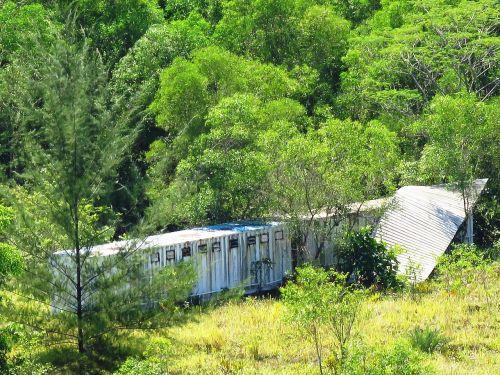 medžioklės namai,miškas,baugus
