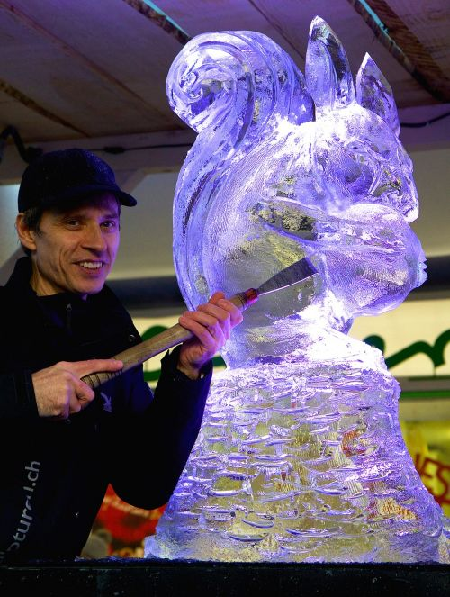 ledo skulptūra,ledas,ledų menininkai,menininkai,voverė