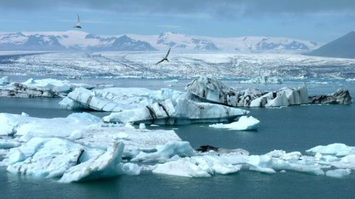 Ledkalnis, Iceland, Ledynas, Arktinė