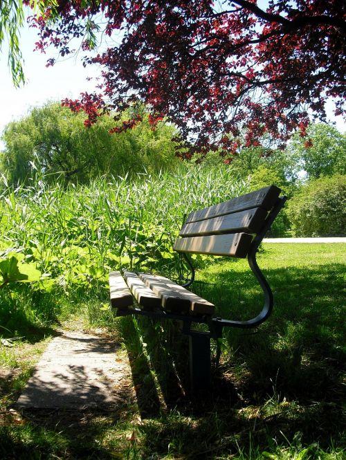 idilija,bankas,sėdynė,poilsis,stendas,kelyje,šešėlis erdvė,atsipalaiduoti,susigrąžinti,vietos poilsis,poilsio pauzė