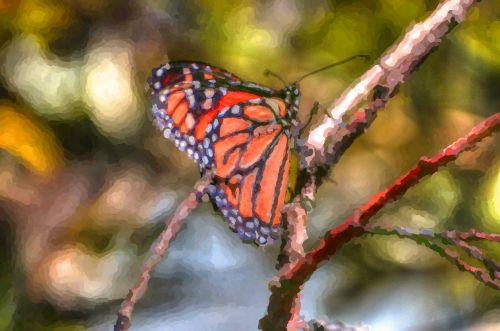 monarchas & nbsp, drugelis, drugelis, drugeliai, vabzdžiai, ruduo, kritimas, meno, tapybos, Impresionistas, Impresionisto drugelis