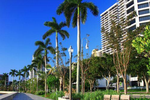 delnas, papludimys, florida, medis, pastatas, gatvė, stendas, lempa, architektūra, vakariniame palmių paplūdimyje