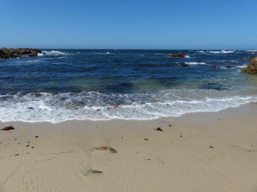 Cove, vandenynas, potvynis, gaunamas, žemas, mėlynas, vanduo, akmenys, vaizdingas, fonas, žemas & nbsp, potvynis, atvykstamasis naršymas