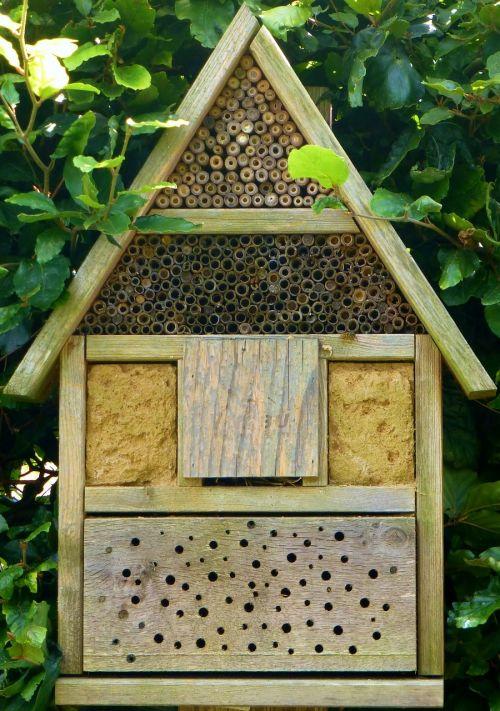 vabzdžių viešbutis, bitės, medienos blokas, bičių viešbutis, vabzdys, mediena, gamta, laukinės bitės, laukinių bičių viešbutis, gamtos apsauga
