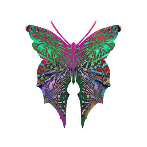 drugelis, drugeliai, žaibiški & nbsp, sparnai, drugelis & nbsp, kolekcija, kolektorius, rinkimas, vabzdys, prizmė, opalescencija, pearly, žaibiškas optinis meno drugelis