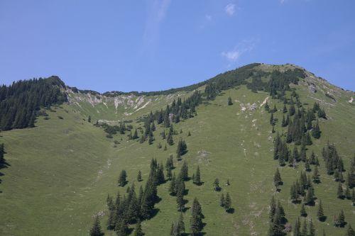 iseler,kalnas,kalnų viršūnių susitikimas,Allgäu,Allgäu Alpės