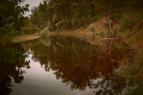 gamta, kraštovaizdis, fėja & nbsp, pasaka, miškas, ežeras, magija, fėja, vasara, vakaras, mįslingas, medžiai, apmąstymai, tai gyvena elfai