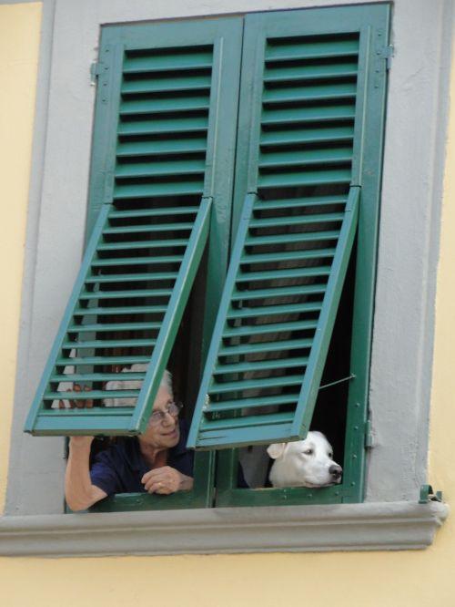 italy,langas,atspalvis,ispanų,žiūri,Moteris,moteris,miestas,šypsosi,miesto,asmuo,kaukazo,smalsumas,asmuo ant lango,šuo