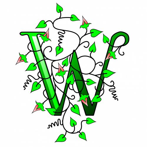 w, laiškas, padengtas, balta, fonas, 3d, šrifto, abėcėlė, lapai, akmuo, žalias, Rokas, augalas, pavasaris, dizainas, izoliuotas, apdaila, niekas, gėlių, ženklas, padengti, simbolis, ekologija, senas, figūra, figūra, objektas, dekoratyvinis, ivy konvekcija, tekstas, senovės, gamta, avi smaigo raidė w