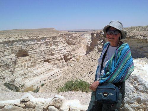 Negev,  Dykuma,  Izraelis,  Palestinas,  Oazė,  Kanjonas,  Izraelis 1