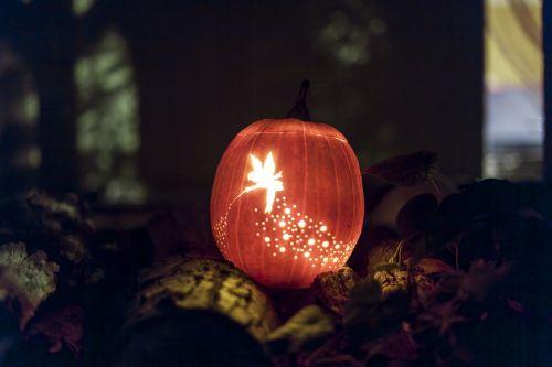 Moliūgas žibintas,Coliukė,žibintas,fėja,Moliūgas žibintas,šventė,Halloween,fantazija,pasaka,misticizmas,žvakės,moliūgai,baisu,juokinga,švesti,naktis,lauke,mediena