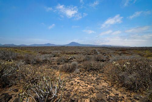 jameos del agua,lanzarote,Kanarų salos,Ispanija,afrika,kraštovaizdis,gamta,lankytinos vietos,vulkanas,lava